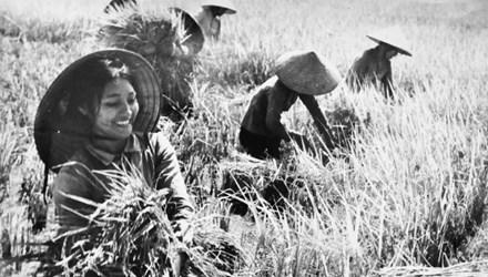 Xúc động trước vẻ đẹp phụ nữ Việt Nam thời chiến