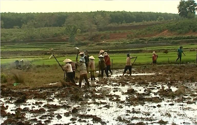 Chư Pah đảm bảo nguồn nước tưới cho cây trồng đông xuân.