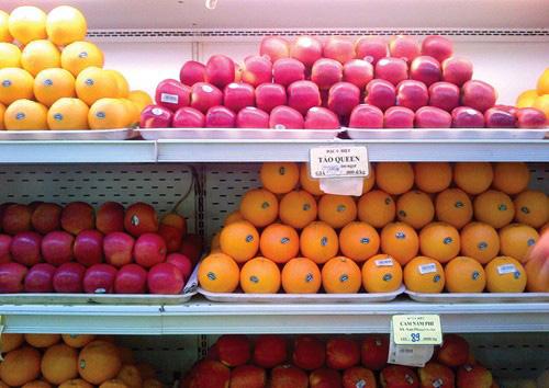 Việt Nam chưa nhập phải táo Mỹ nhiễm khuẩn
