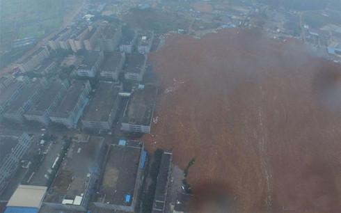 Lở đất kinh hoàng ở Thâm Quyến:Đưa 30 chó nghiệp vụ tìm người mất tích