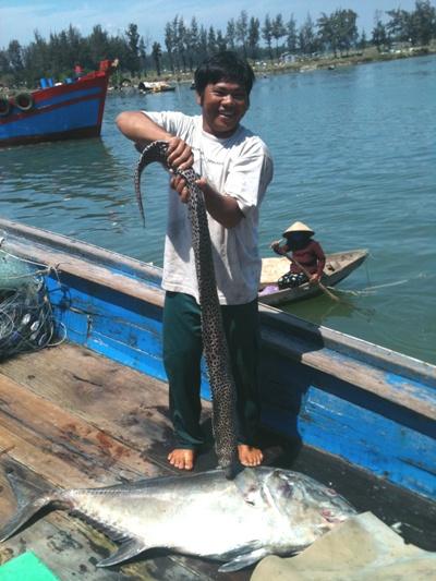 Quảng Ngãi: Ngư dân thu tiền tỷ từ lộc biển đầu năm