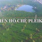 Biển hồ Chè Gia Lai