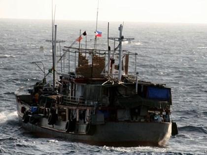 Bắt giữ 3 tàu cá Thái Lan đánh bắt trái phép trên vùng biển Cà Mau
