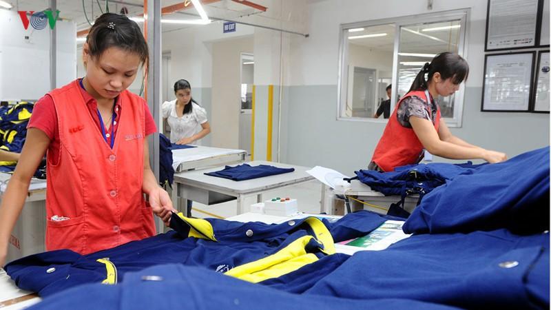 Tỷ lệ hàng Việt Nam ở thị trường các nước tham gia CPTPP còn thấp