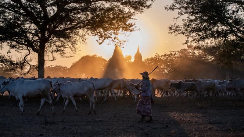 Ngắm những bức ảnh du lịch đẹp nhất đầu năm 2020