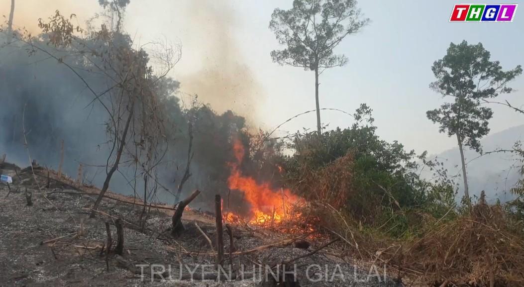 Quảng Nam: Rừng phòng hộ Đông Giang bị cháy hơn 32ha