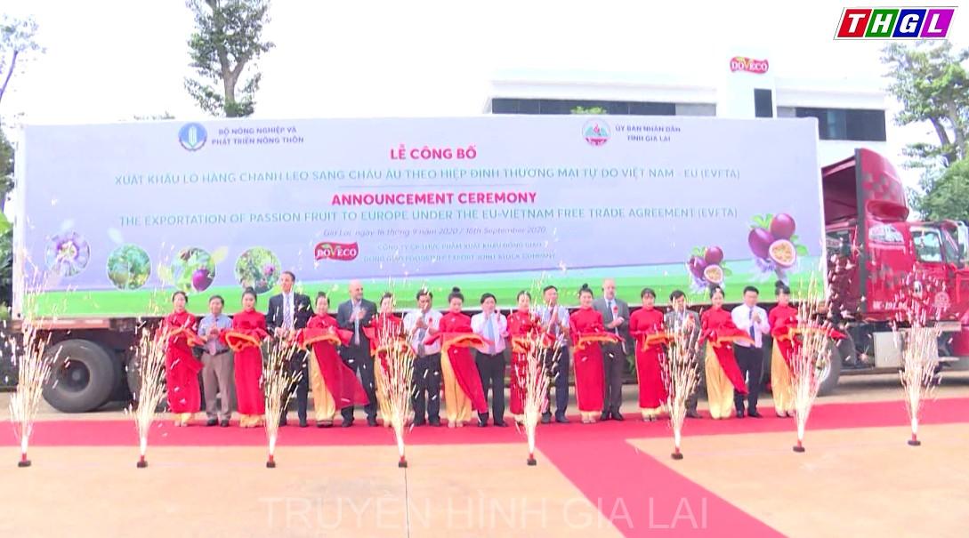 Cơ hội gia tăng kim ngạch xuất khẩu nông sản của Gia Lai