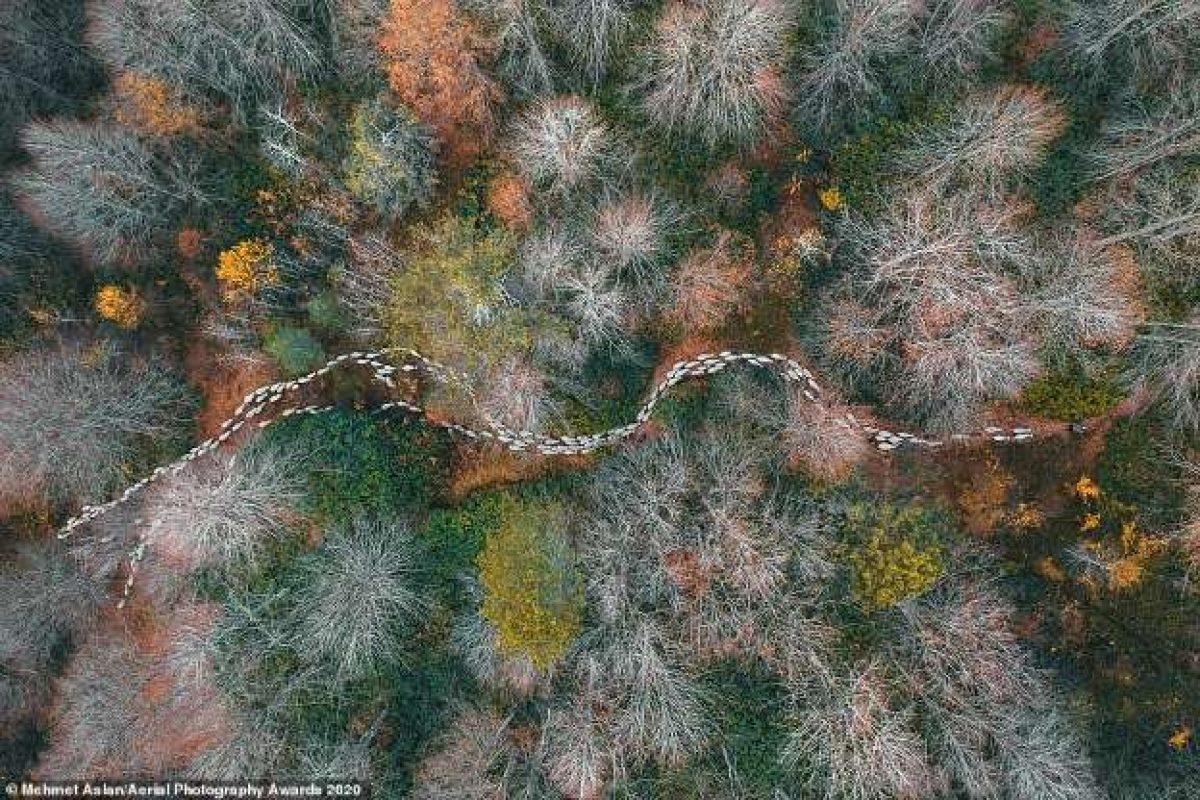 Ấn tượng những bức ảnh độc đáo chụp từ trên cao