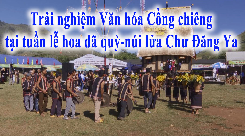 Trải nghiệm Văn hóa Cồng chiêng tại tuần lễ hoa dã quỳ-núi lửa Chư Đăng Ya