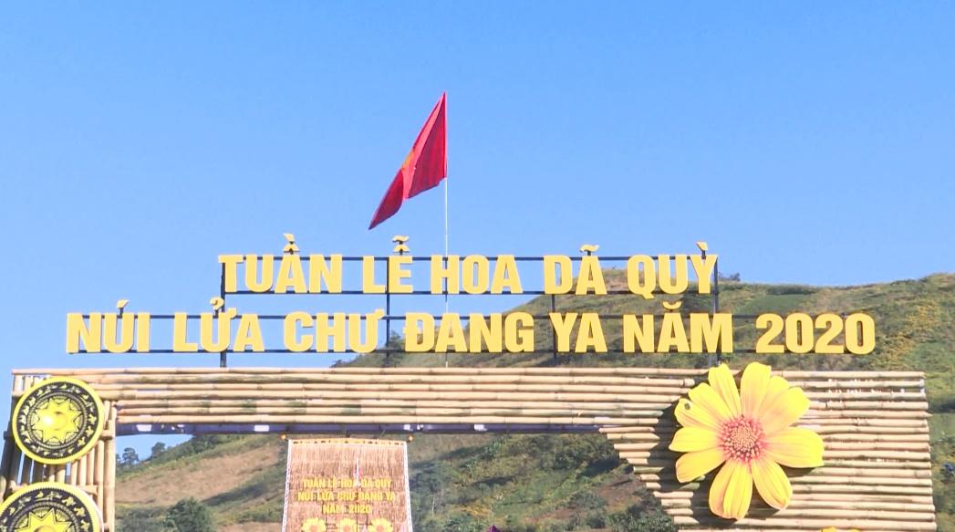 Tuần lễ hoa dã quỳ – núi lửa Chư Đăng Ya 2020