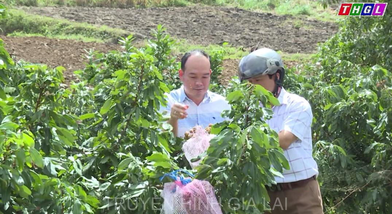 Ghi nhận tâm tư, nguyện vọng của cán bộ, nhân dân huyện Đăk Pơ về thúc đẩy phát triển kinh tế