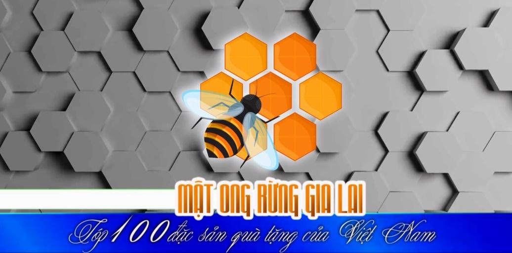 Mật ong rừng Gia Lai – Top 100 đặc sản quà tặng của Việt Nam
