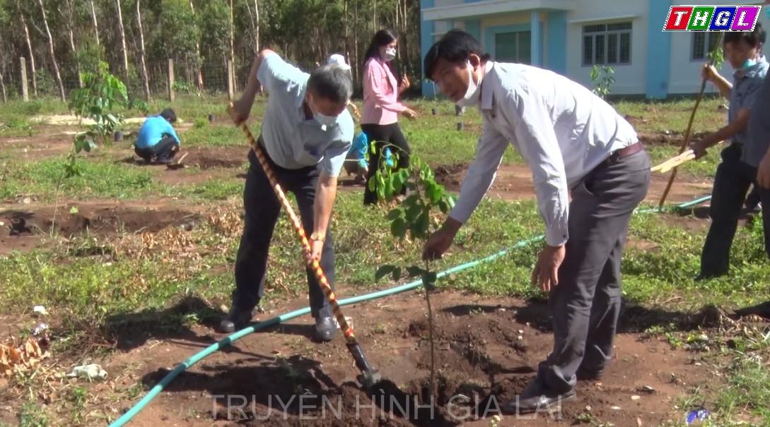 LĐLĐ huyện Mang Yang phát động trồng cây hưởng ứng Chương trình trồng 1 tỷ cây xanh