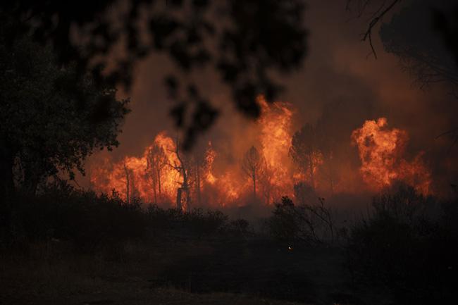 Hơn 1.100 nhân viên cứu hỏa vật lộn để kiểm soát đám cháy rừng tại Pháp