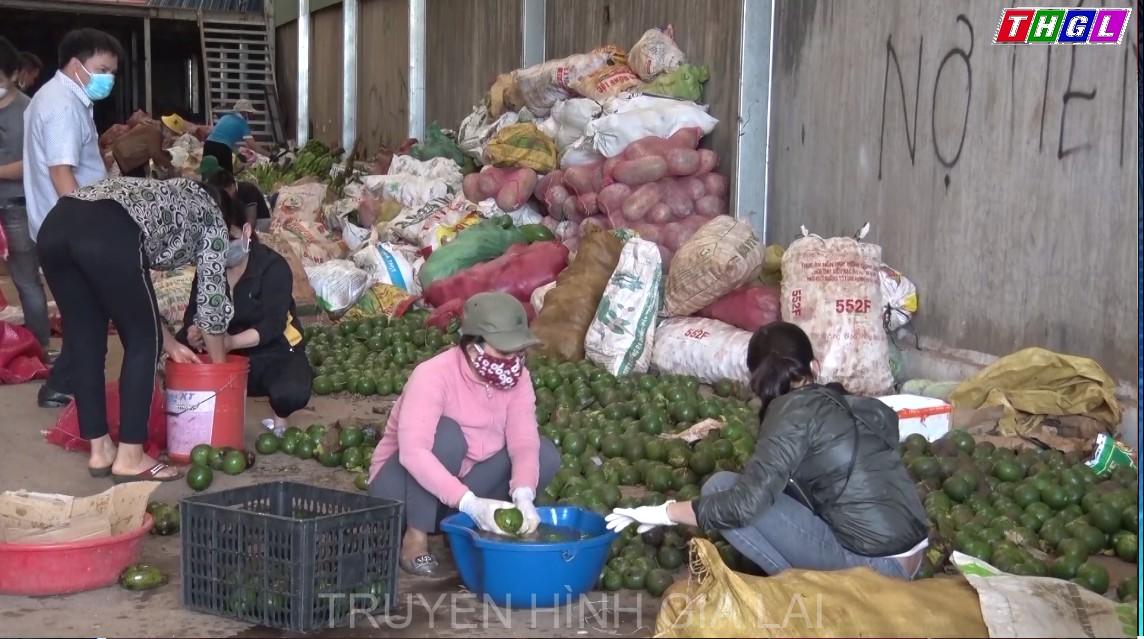 Ủy ban Mặt trận Tổ quốc Việt Nam tỉnh Gia Lai chuyển hơn 40 tấn hàng hỗ trợ TP. Hồ Chí Minh và tỉnh Bình Dương