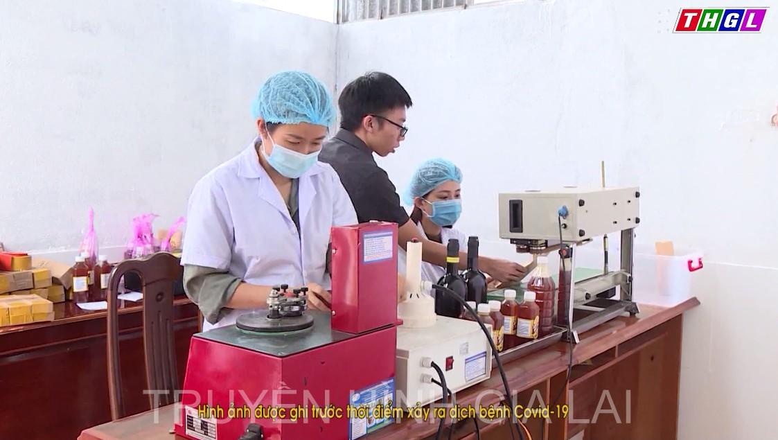Gia Lai tăng cường hỗ trợ đăng ký sở hữu trí tuệ cho sản phẩm